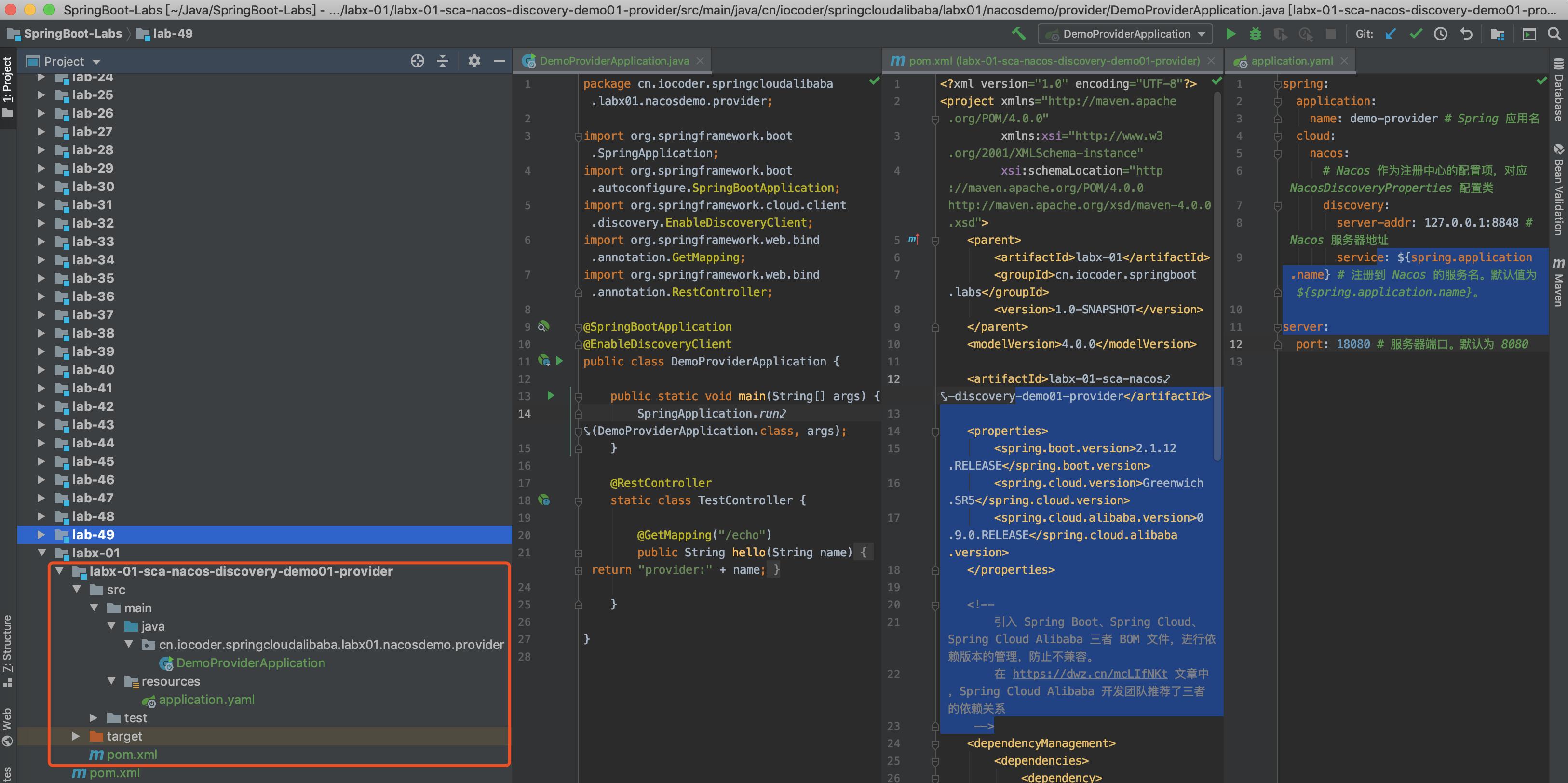 `demo-provider` 项目