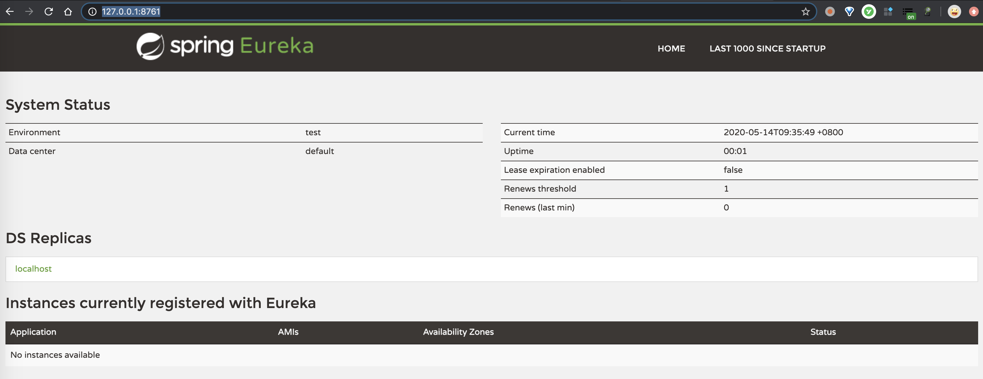 Eureka 注册中心 - 界面