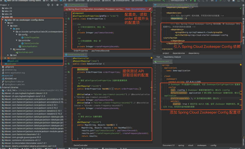 `labx-26-sc-zookeeper-config-demo` 项目