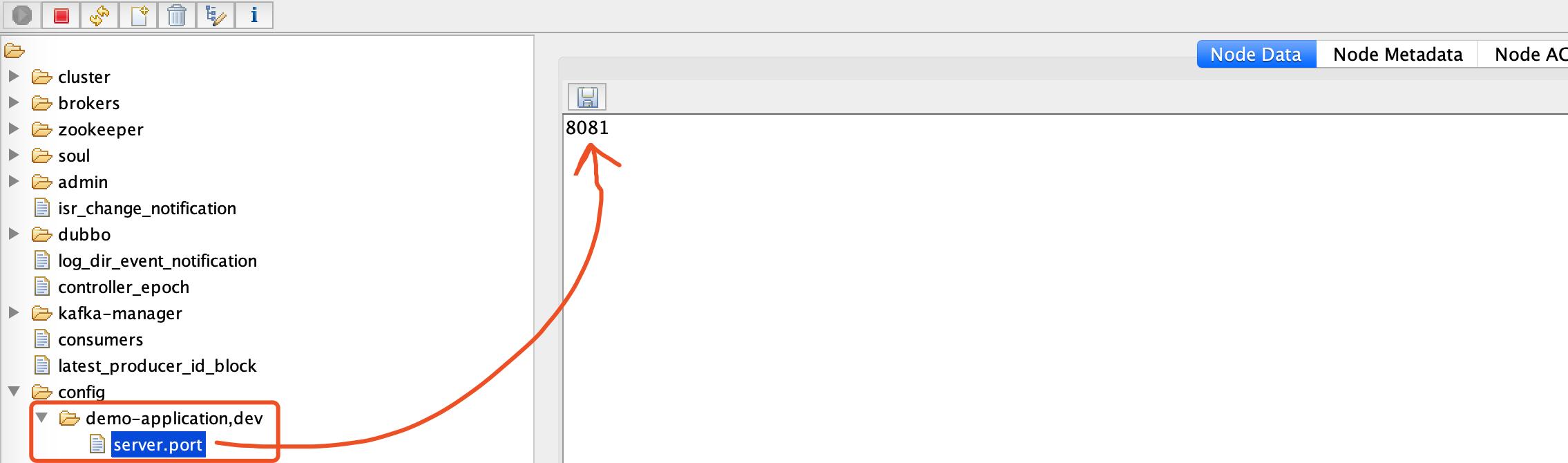 `/config/demo-application,dev` 目录
